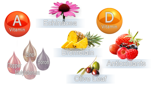 Super Immune combines Vitamin A, Vitamin D3, Zinc, Copper, Molybdenum, Boron, Bromelain, Echinacea, Olive leaf, and Antioxidants from whole berries.