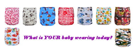 All Cloth Diapers