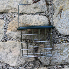 Large Suet Block Feeder