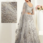 Grey Net Embroidered Beautiful Wedding Lehenga Choli  Designs