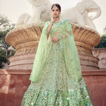 Light Green Embroidered Net Latest Indian Lehenga Choli