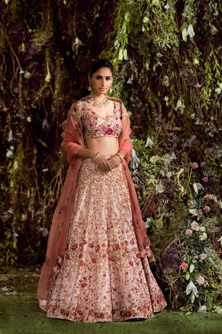Light Pink Heavy Embroidered Bollywoodfashion Lengha Choli