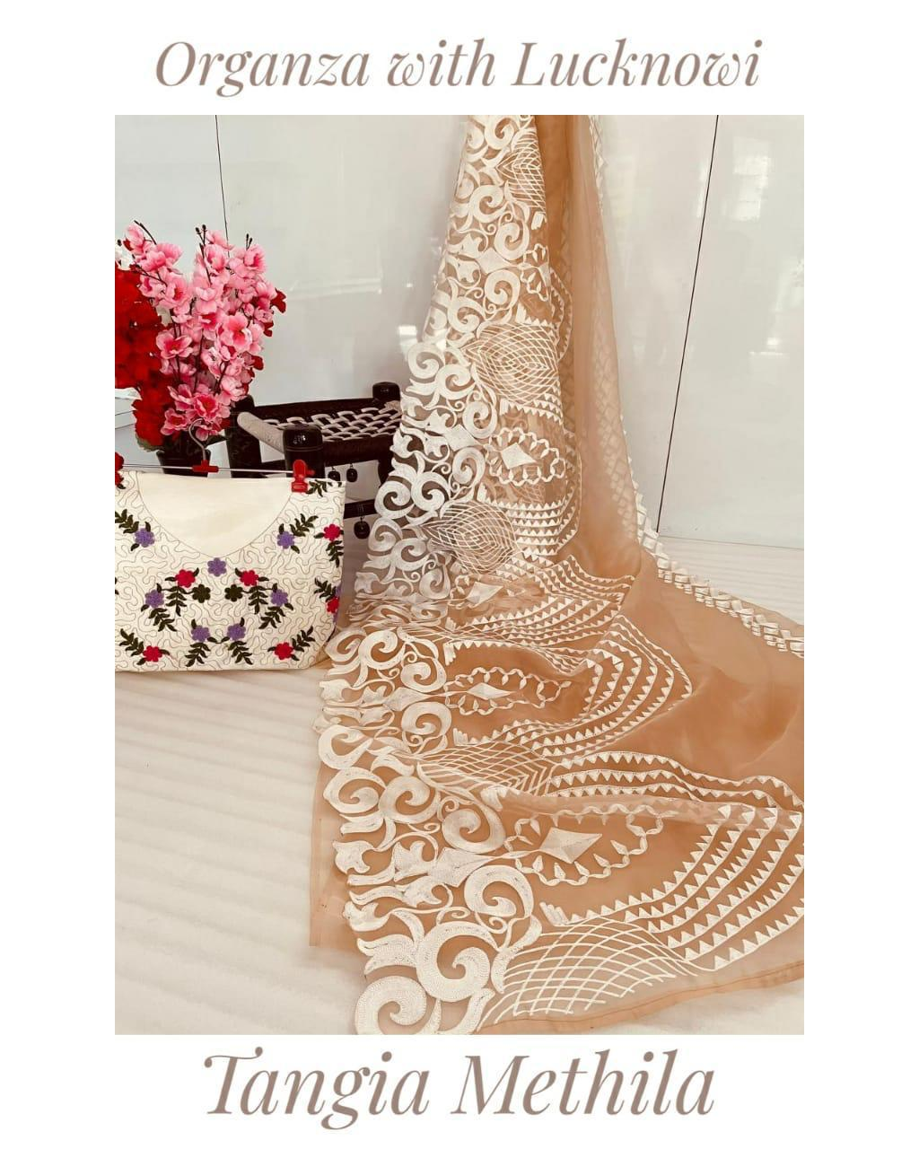 Litchi Soft Organza Saree With Chikankari Work Online Shopping