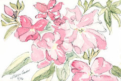 Judy's Garden -- The Pink Collection