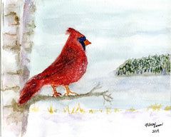 The Lone Winter Cardinal