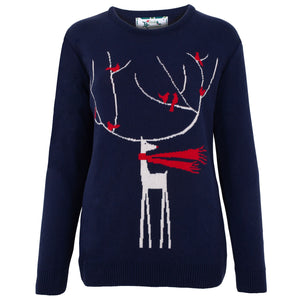 A Windy Day Womens Eco Christmas Jumper