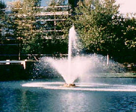 Otterbine Phoenix Floating Pond Fountain
