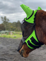 BUZZ OFF FLY MASK WITH EARS