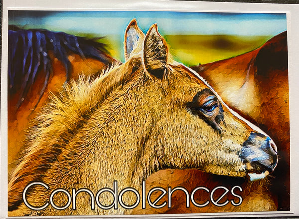 Condolence & Thinking of You Horse Cards