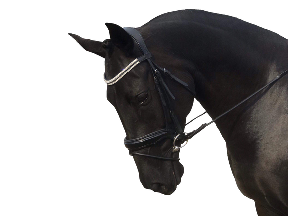 The Obsidian Jewel Snaffle Bridle