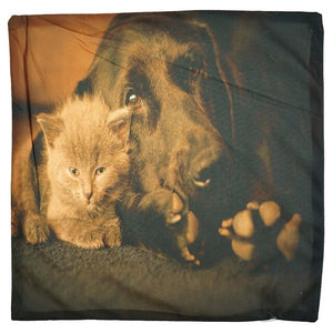 Grey Kitten & Dog Pillow