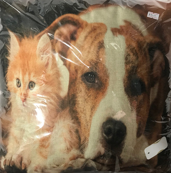 Ginger Kitten & Dog Pillow