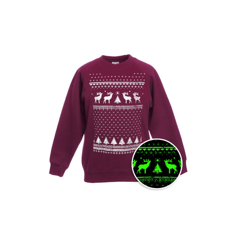 Children's Glow in the Dark Reindeer Sweatshirt