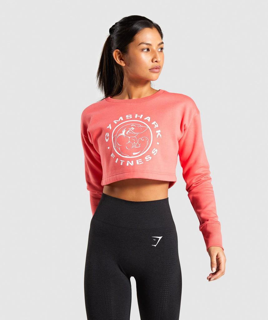 Gymshark Legacy Fitness Sweater - Coral 1