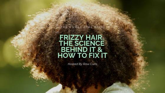 Frizzy Hair. The Science Behind It & How To Fix It