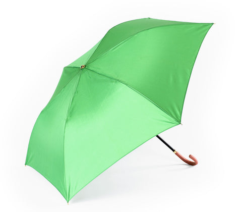 Just in Case umbrella, Apple Green