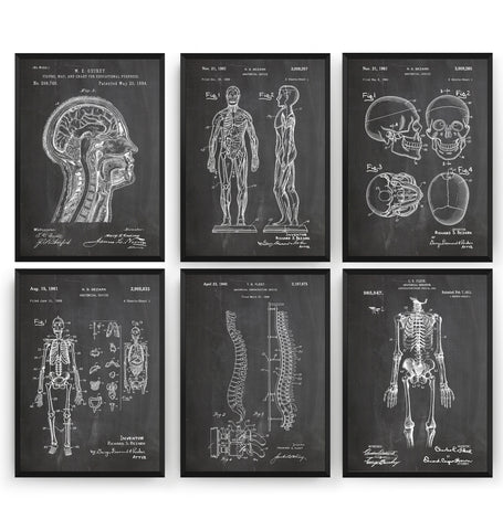 Anatomy Set Of 6 Patent Prints - Magic Posters