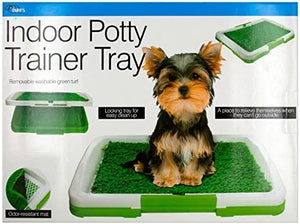 Indoor Potty Trainer Tray - Pack of 6