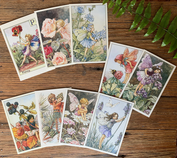 Flower Fairies Seasonal Spotter Guides