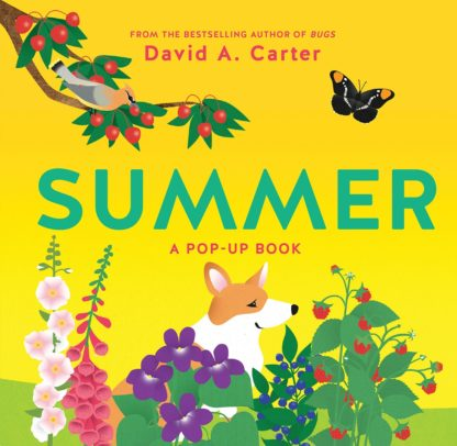 Summer: A Pop Out Book