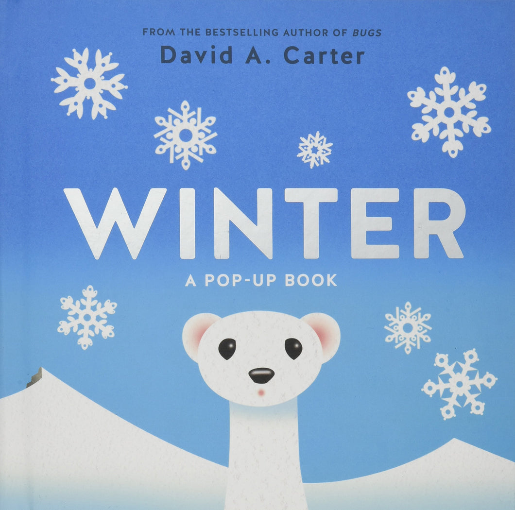 Winter: A Pop Up Book