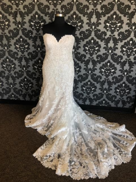 Essense of Australia Women's Wedding Dress Lace Ivory/Champagne