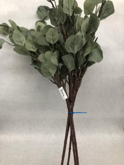 Branch eucalyptus Green Size 5ct FLORAL