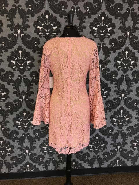 Size 12 Blush Julian Chang Knee Lace Long Bell Sleeve