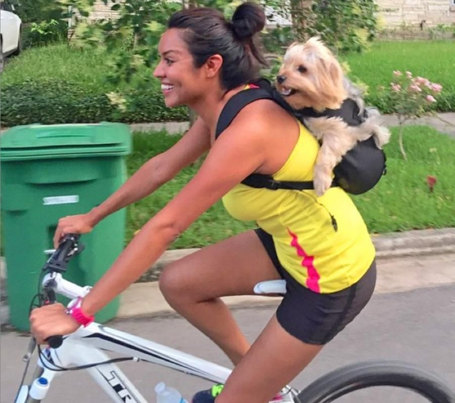 dog in backpack on bicycle