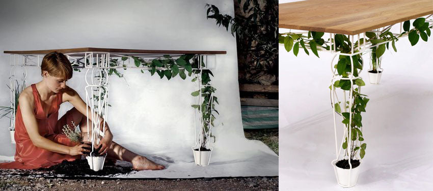 planter table multifunctional item
