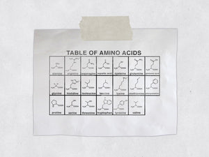The Amino Acid Chemistry Rubber Stamp - Teacher Organic Chemistry Stamp - OChem / Science Gift