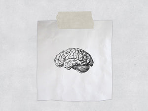 The Vintage Style Brain Stamp - Biology/Anatomy Illustration Rubber Stamp - Anatomical Stamp