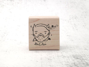 Galileo Galilei Science Cat Rubber Stamp - Mad Scientist Inventor Stamp - Funny Stamp - Teacher's Inspirational Grading Stamp