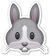 Rabbit Face