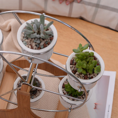 Set of Ferris Wheel Flower Pots Decor Planters