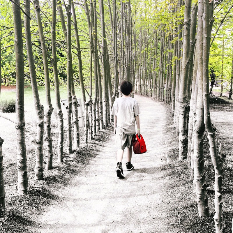 Boy walking between trees, carrying a red Milkdot lunch box.