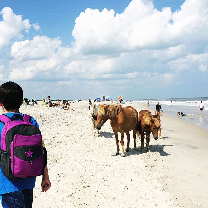 Boy wearing a purple Milkdot backpack, walking on a beach with wild ponies.