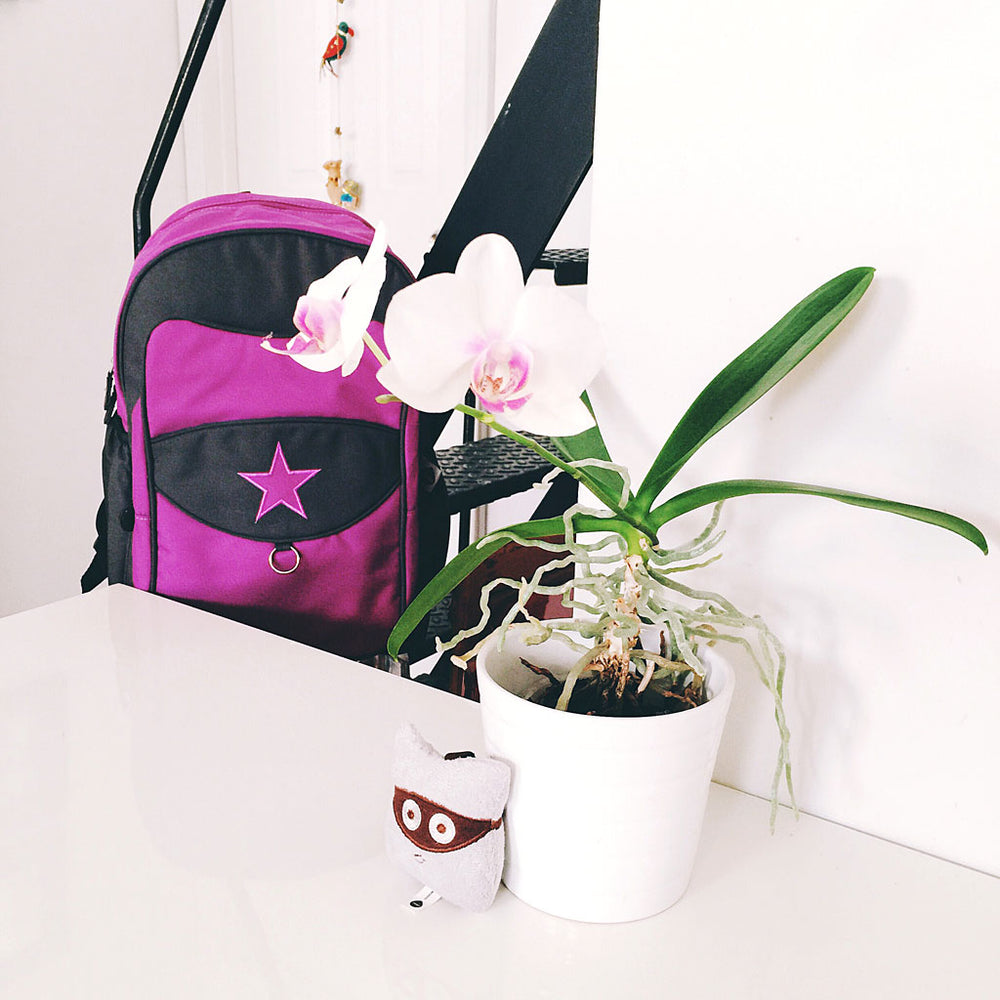 Grape Milkdot backpack pictured with our Wooro plush key ring an a pretty orchid plant