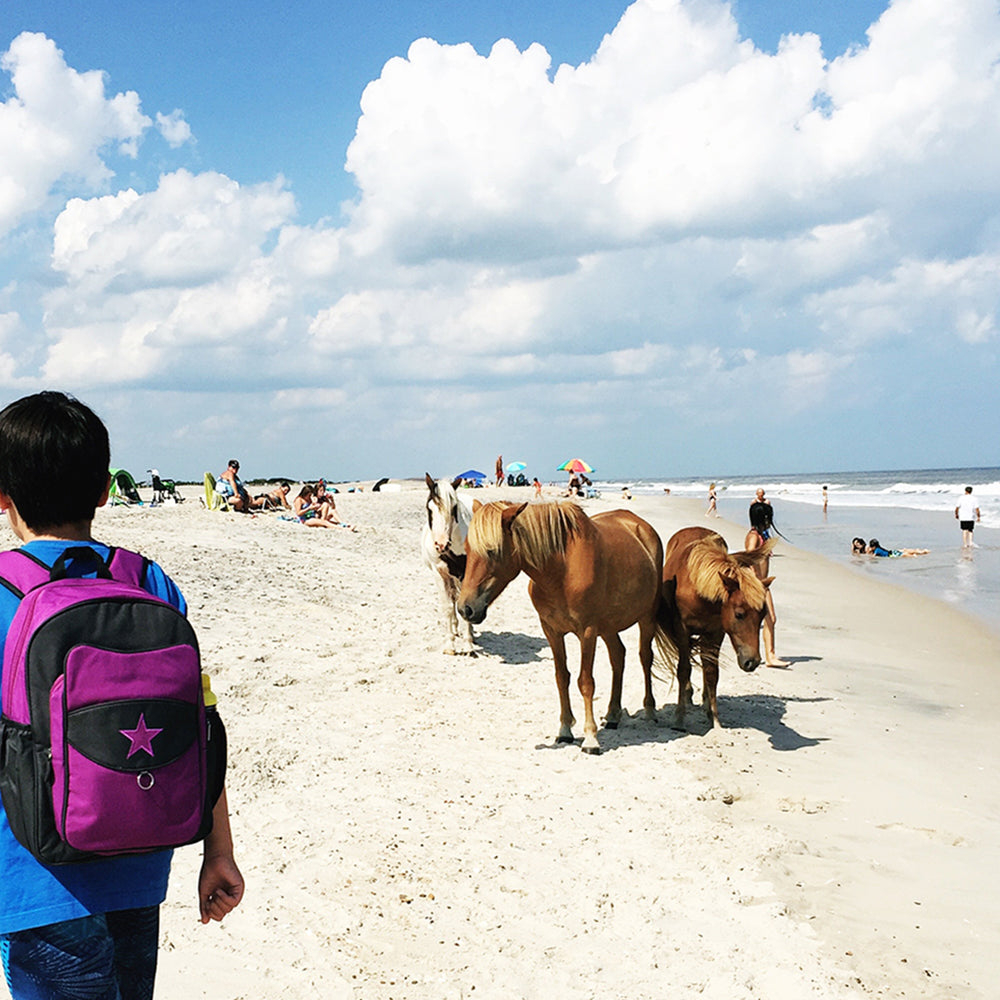 Boy wearing a Milkdot grape backpack, walking on the beach with ponies