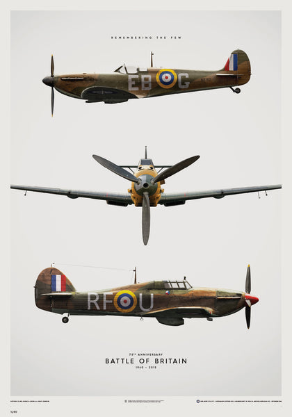 Battle of Britain Aircraft Limited Edition, Art  - Bachelor Haus
