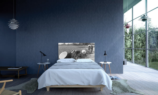 Modern Bedroom with NOYO headboard