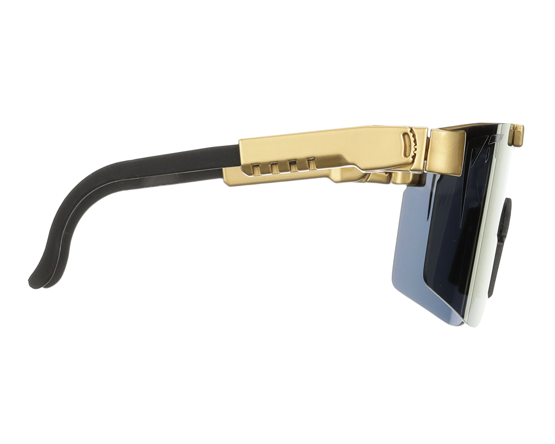 The Gold Standard Polarized