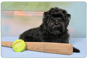 Affenpinscher Cutting Board