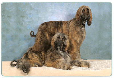 Afghan Hound Cutting Board