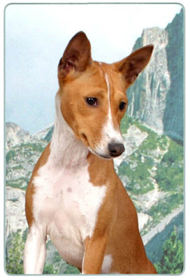 Basenji Cutting Board
