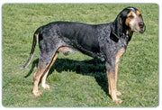 Blue Tick Coonhound Cutting Board