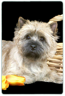 Cairn Terrier Cutting Board