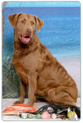 Chesapeake Bay Retriever Cutting Board