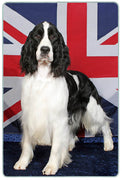 English Springer Spaniel Cutting Board