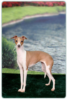 Italian Greyhound Cutting Board